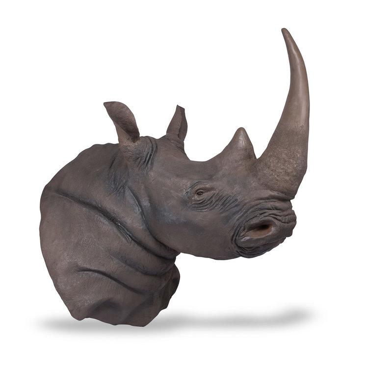 fibreglass+rhino+taxidermy+horn+1