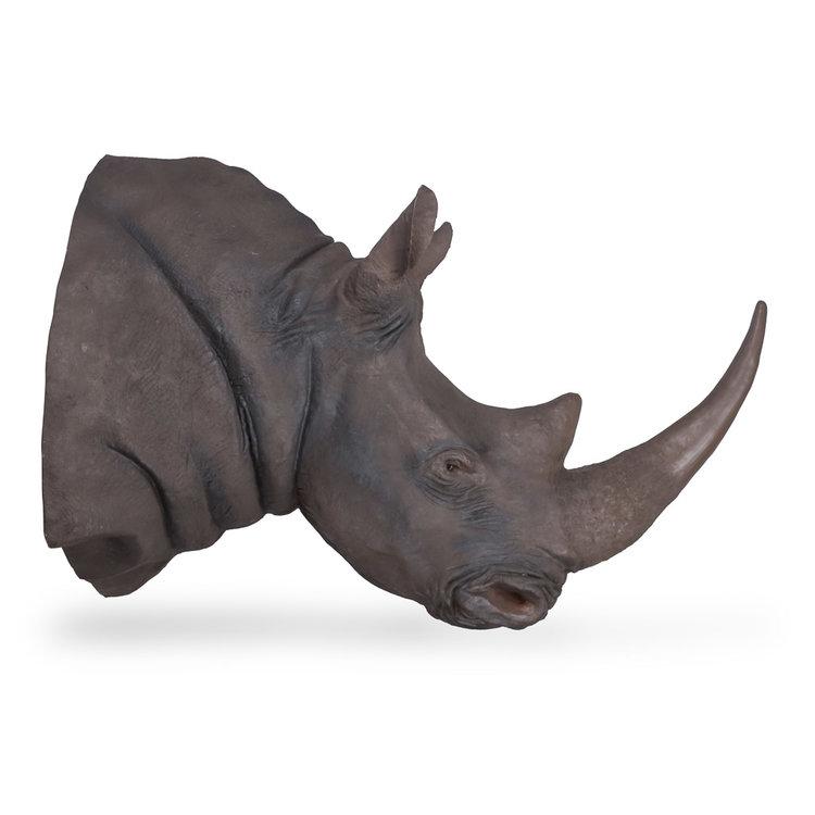 fibreglass+rhino+taxidermy+horn+2
