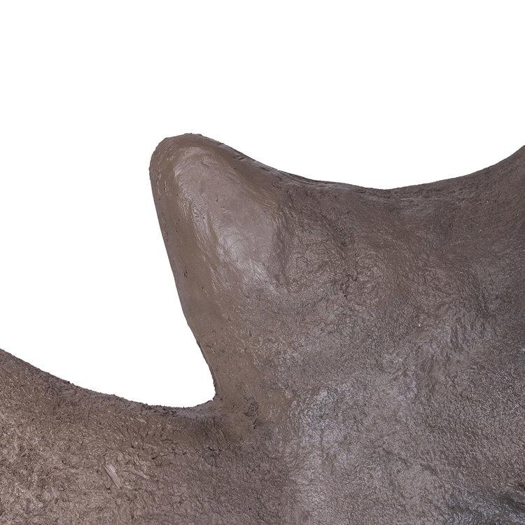 fibreglass+rhino+taxidermy+horn+5
